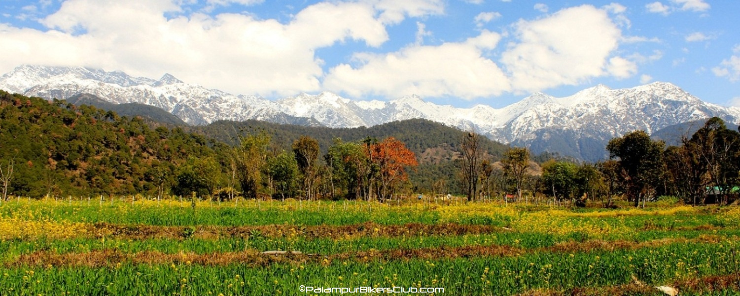 Palampur-featured