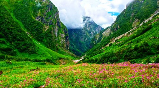 Valley Of Flowers – Uttrakhand