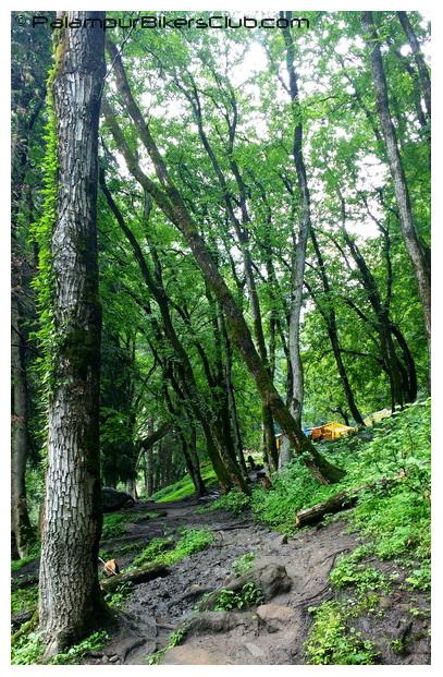 Kheer Ganga Trail